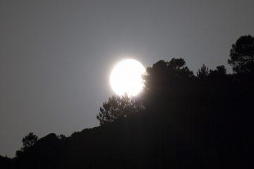 Escursione luna piena trekking madonna del monteNaturalmente elba