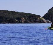 KayakIsola d'Elba escursione  gemini