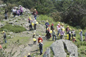 escursioni per scuole vacanze all' isola d'elba la Macchia MEditerranea
